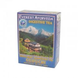 GUDUCHI Nudności i biegunka Herbatka ajurwedyjska