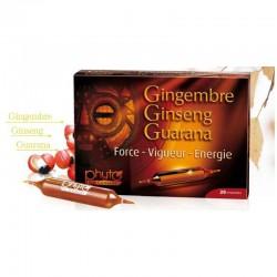 Ginseng Gingembre Guarana Wydolność Fizyczna Psychiczna Seksualna