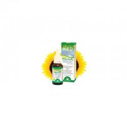 Witamina K2 w kroplach Dr Jacobs MK-7 20 ml olej słonecznikowy tokoferol naturalna witamina K2