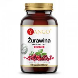 Żurawina ekstrakt 150:1 50% PAC 60 kaps. Yango proantocyjanidyny ekstrakt z żurawiny Vaccinium macrocarpon