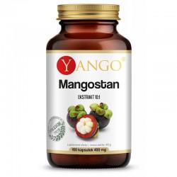 Mangostan 100 kapsułek ekstr. 10:1 Yango Garcinia mangostana